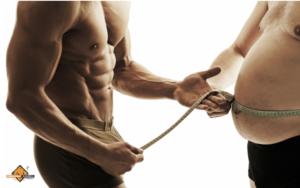 Fedt omkring maven sænker testosteron